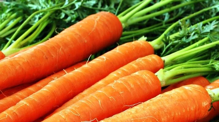 Вегетарианский стол — рецепты с морковью