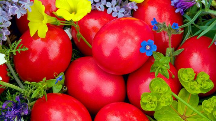 Как покрасить яйца свеклой: полезные советы