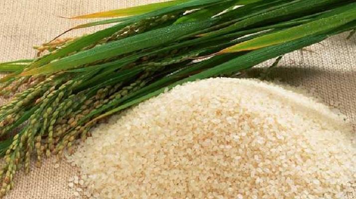 Рисовая Вода — Средство, Которое Не Имеет Аналогов