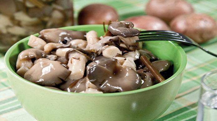 Правильный рецепт маринада для грибов вешенок